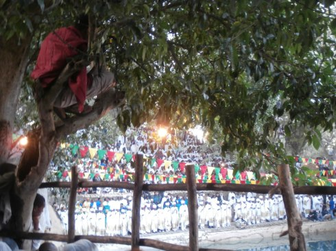 There were no seats left so people started climbing trees, very Zachius...