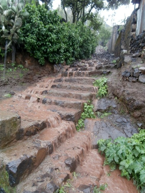 the steps that lead up to my house - chocolate waterfall