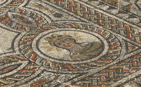 a preserved mosaic floor