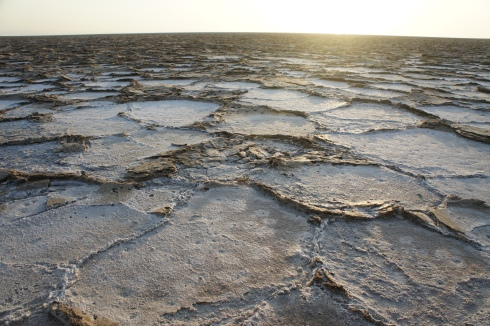 Dried salt flats