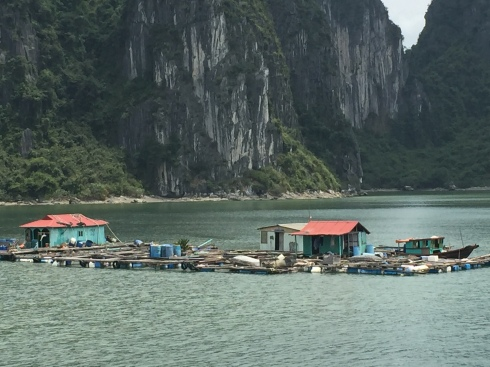 A floating fishing village in Halong Bay.