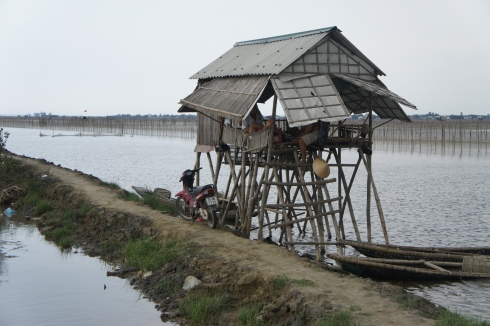 Shrimp farmers on stilts.